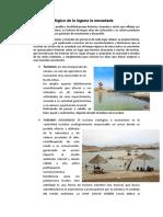 Modelo Ecológico de La Laguna La Encantada