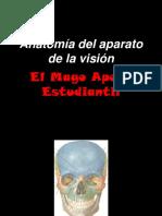 ANATOMIA DE LA VISION (1).pptx