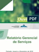 Relatório Anual - 2018 PDF