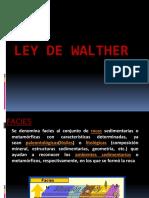 147887834-Ley-de-Walther-1123456.pptx