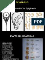 01_Embriologia