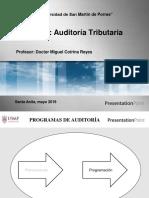 auditoria Programación, Marcas, Evidencias y Papeles de Trabajo