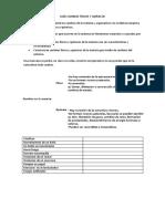 Guía Cambios Físicos y Químicos