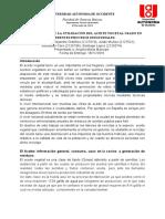 Proyecto Final Economia Ambiental