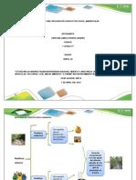 Fase 1 - Reconocer conflictos socio-ambientales.pdf