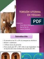 231855105-Torsion-Uterina-en-Yeguas-FINAL.pptx