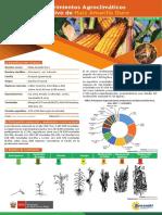 Ficha Tecnica19 Cultivo Maiz Amarillo Duro