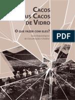 ZANETTINI Paulo Cacos e Mais Cacos de Vidro O Que Fazer Com Eles