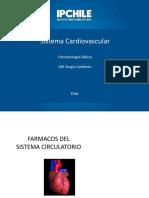 Clase 11 Sistema Cardiovascular