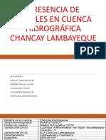 Presencia de Metales en Cuenca Hidrográfica Chancay Lambayeque