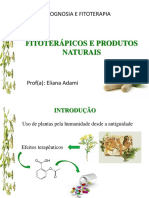 02 fitoterapicos