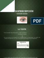 Sensopercepción 2