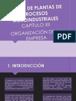 Organizacion de La Empresa