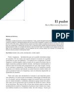 Dialnet-ElPudor-1390199.pdf