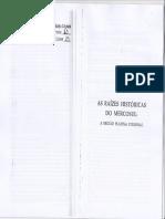 Aula 4 - As raízes históricas do mercosul.pdf