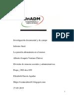 informe final (Reparado).docx