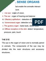 Eye & Ear Students 2015a 0