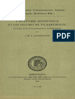 1928 L'Anatomie Mandchoue Et Les Figures de Th. Bartholin