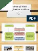Nutrientes de Los Ecosistemas Acuáticos