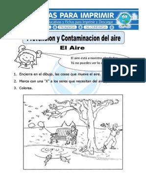 Ficha De Prevención Y Contaminacion Del Aire Para Primariapdf