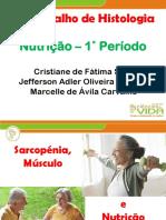 Sarcopenia Histologia