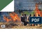 Lucha Campesina y Trabajo Pastoral en La Costa Sur de Guatemala
