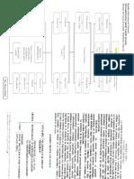 Mapas de Neurologico II