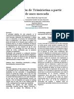 Paper Proyecto (1)