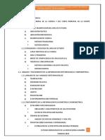 estudio hidrologico illanya (IRRIGACIONES) ciclo cero.pdf