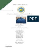 272657823 Trabajo Word Vertedero Pico de Pato Docx