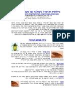 p0595 (1).pdf