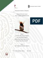 Práctica Reproducción en Aves