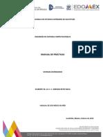 Manual Sistemas Distribuidos