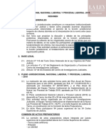 Pleno-Jurisdiccional-Nacional-Laboral-Resumen