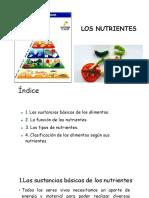 8°_Nutrientes