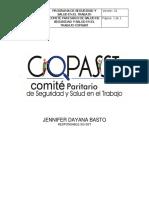 Conformacion Del Copasst