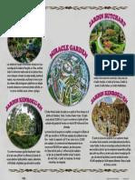 PDF- Jardines Paola Sierra