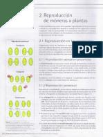 02. La Reproduccion de Moneras a Plantas