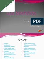 Los Sentidos1