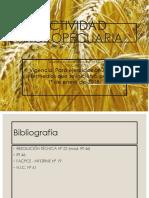 Contabilidad Agropecuaria RT46
