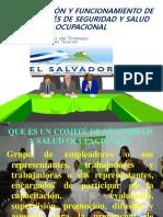 Presentación Para Comités Modulo 1, Año 2012