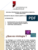 Virologia Trabajo