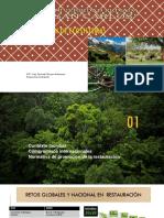 Restauración de ecosistemas VII semestre noche