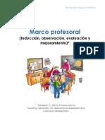 Marco Profesoral*