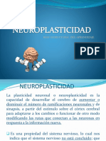 neuroplasticidad-cbv