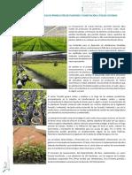 Ventajas Tecnicas y Economicas v.1