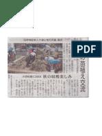 2019-05-26芋の苗植え交流