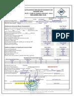 WPQ-MIXTO-2018-005 GERARDO JARA AWS D1.1.pdf