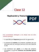 Clase 12 - Replicación y Transcripción