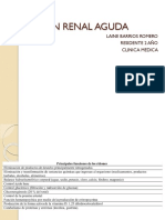 Lesion Renal Aguda